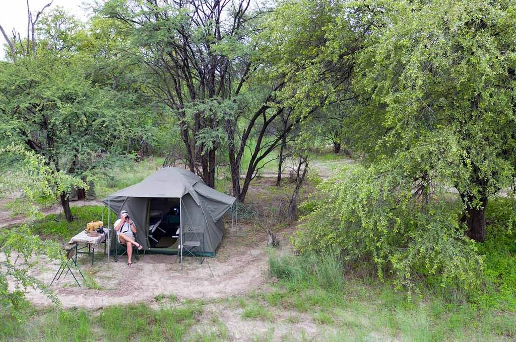 Spotting wildlife from the Heritage Blue Ribbon camp tent
