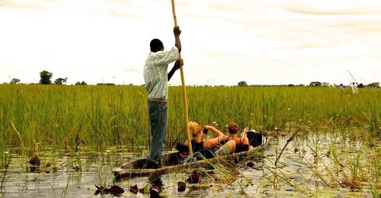 Mokoro, Okavango Delta